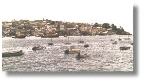 Polruan and the Fowey river - always something to see. Photo: R.J.Tarr © 2001